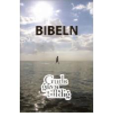 Bibel - Folkbibeln : Guds gåva till dig