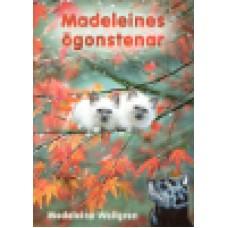 Wallgren, Madeleine : Madeleines ögonstenar